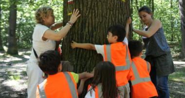 L'Engagement des enfants Ecocitoyens pour un monde meilleur