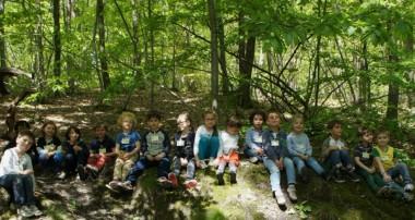 5 mai 2014 – Sortie découverte de la forêt de Fausses-Reposes