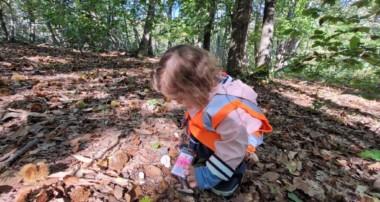 «La Minute de Léo» – Sortie Forêt de Fausses Reposes TPS et PS – 8 octobre 2021